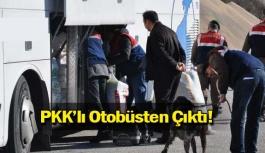 PKK'lı Otobüsten Çıktı!