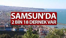 Samsun'da 2 Bin 18 Dernek Bulunuyor