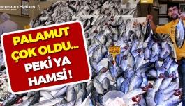 Samsun'da Balıkçılar Hem Güldü Hem Düşündüler