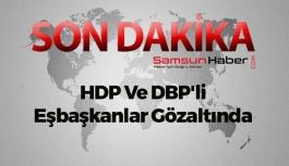 HDP Ve DBP'li Eşbaşkanlar Gözaltında