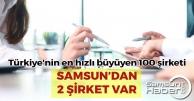 Listede Samsun'dan 2 Şirket Var
