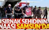 Şırnak şehidi Mesut Yılmaz'ın naaşı Samsun'a getirildi