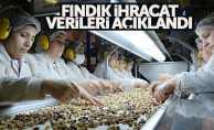 150 bin ton iç fındık ihraç edildi