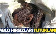 Samsun'da kablo hırsızları tutuklandı