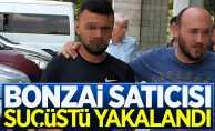 Samsun'da bonzai satan şahıs tutuklandı