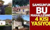 Samsun'un bu mahallesinde 4 kişi yaşıyor