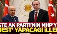 İşte AK Parti'nin MHP'ye jest yapacağı iller
