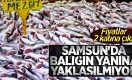Samsun'da balığın yanına yaklaşılmıyor! Fiyatlar 2 katına çıktı