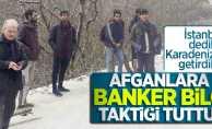 Afganlara Banker Bilo taktiği tuttu! İstanbul dediler Karadeniz'e getirdiler