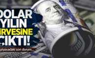 Dolar yılın zirvesine çıktı!