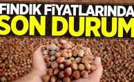 Fındık fiyatlarında son durum! 2 Mayıs Perşembe