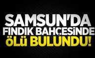 Samsun'da fındık bahçesinde ölü bulundu!