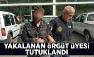 Yakalanan örgütü şüphelisi tutuklandı