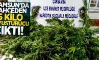 Samsun'da bahçeden 15 kilo uyuşturucu çıktı