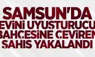 Samsun'da evini uyuşturucu bahçesine çeviren şahıs yakalandı