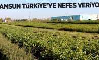 Samsun Türkiye'ye nefes veriyor