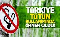 Türkiye, tütün kullanımında örnek oldu!