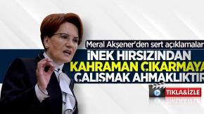 Meral Akşener, Kılıçdaroğlu'na saldıran şahıs hakkında flaş açıklamalar