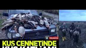 Kuş Cenneti'nde kuş katliamı