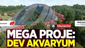 Mega Proje: Dev Akvaryum